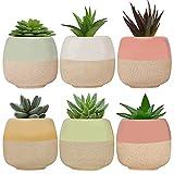 BELLE VOUS Mini Macetas Decorativas de Cerámica (Pack de 6) 6 x 5,5 cm – Set...