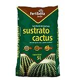 Sustrato Cactus 5L Interior y Exterior