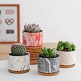 Welltop 9cm Cerámico Colección Suculento Maceta Cactus Flor Macetas Envase Plantas...