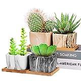 Danolt Maceta para Plantas Suculentas, 4pcs Maceta de Cactus para Interiores de...