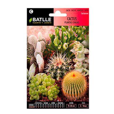 Semillas de Cactus