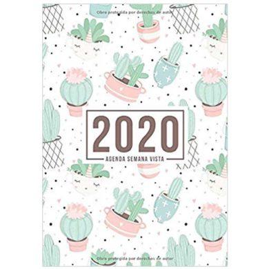 Organizador Anual de Cactus