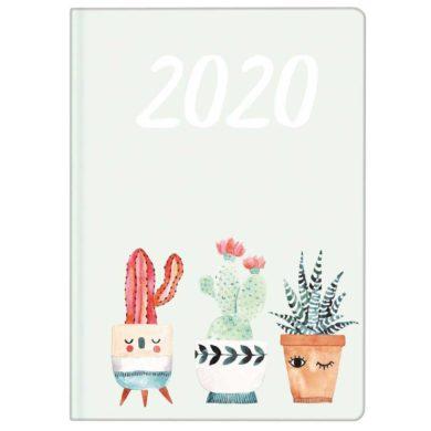 Mini agenda de bolsillo de cactus