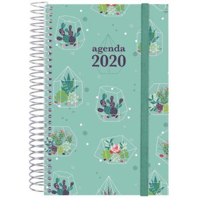 Agenda Finocam de Cactus