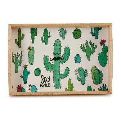 Bandeja de dibujos de cactus