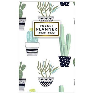 Mini Agenda de Cactus