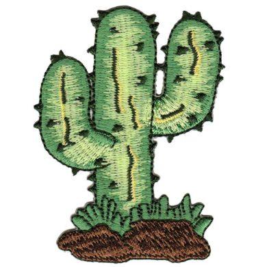 Parches de Cactus