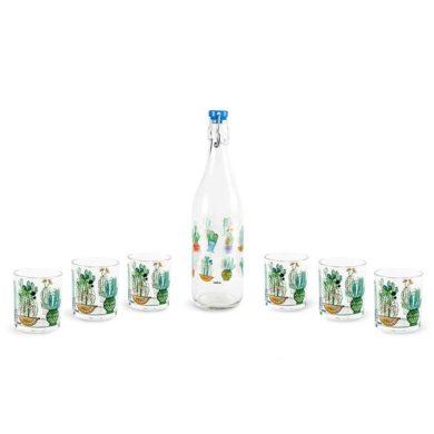 Botella y vasos de cristal con cactus