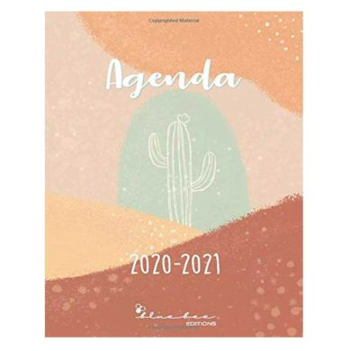 Agenda escolar 2020-2021 de cactus