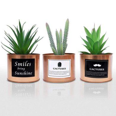 Mini cactus artificiales de plástico