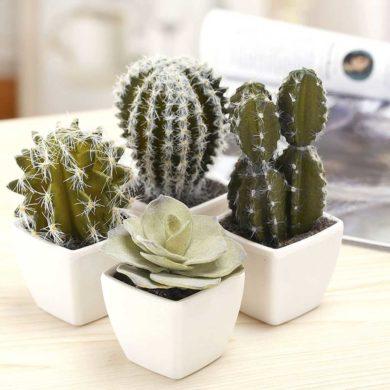 Mini cactus artificiales realistas